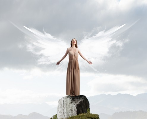 Beautiful woman in long dress with wings on top